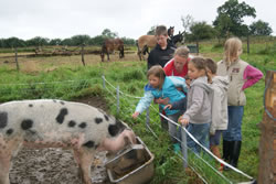 Ferme pedagogique normandie animations